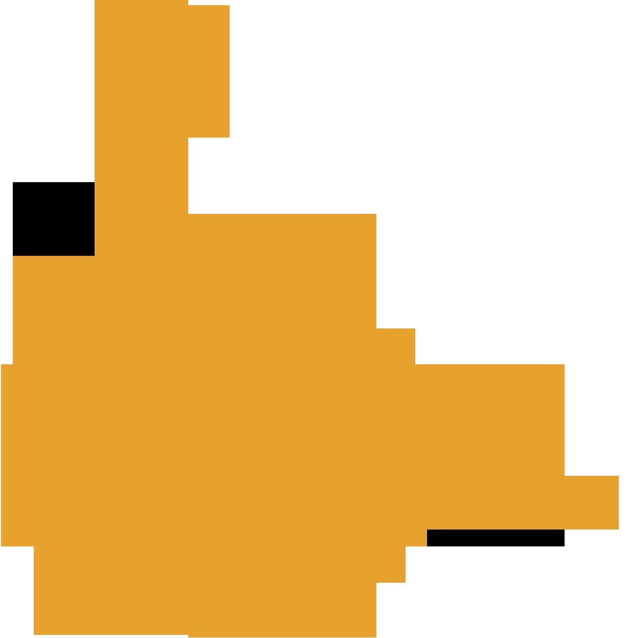 Cvaa Audits Accessibility Partners
